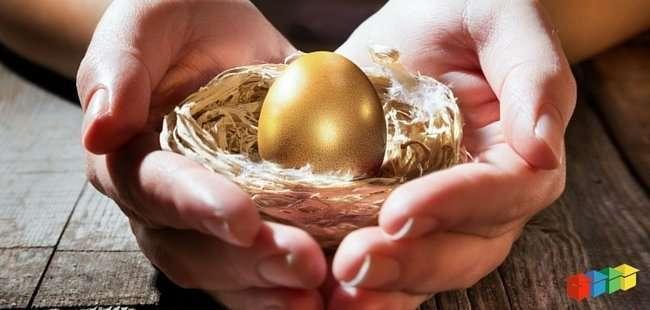 SMSF -egg-nest